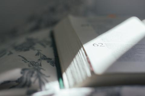 image of an open book in the sunlight