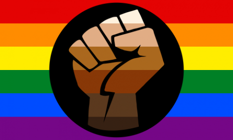 The rainbow gay flag in the background and a simplified vector of the black power fist on a black circle in the foreground. The fist is colored with 6 horizontal stripes ranging from light brown at the top, to dark brown at the bottom